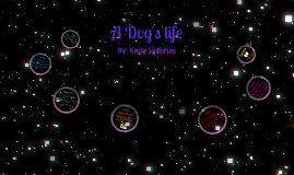 themes of flowers for algernon by karly skocelas on prezi a dog s life