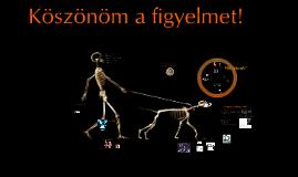 Az élő test virtuális felszeletelése