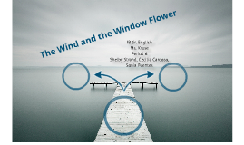 wind and window flower Residential wind turbine prices and technical information wind turbines for electric grid connected wind power at home domestic wind energy.
