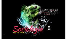 A sociedade dos indivíduos