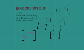 Forestry: Noxious Weeds