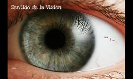 Copy of Copy of Sentido de la vision
