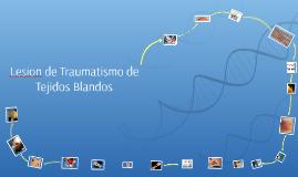 Lesion de Traumatismo de Tejidos Blandos