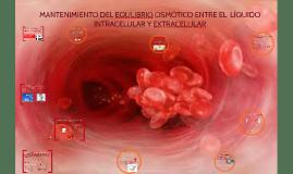 MANTENIMIENTO DEL EQULIBRIO OSMÓTICO ENTRE EL  LÍQUIDO INTRA
