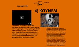 Copy of ΚΑΤΟΙΚΙΔΙΑ ΖΩΑ