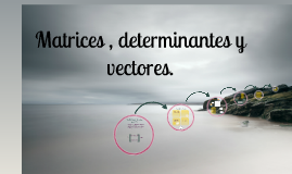 Copy of Matrices, determinantes y vectores.
