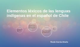 Elementos léxicos de las lenguas indígenas en el español de