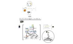 Pet project: Web em tempo real na Maratona de Basquete