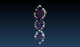 Genetics of Race Hook