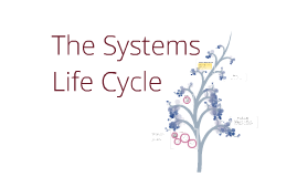 Copy of The Systems Life Cycle