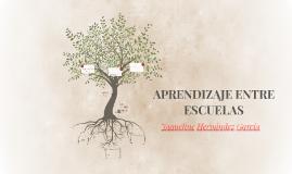 APRENDIZAJE ENTRE ESCUELAS