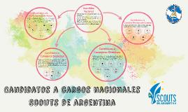 Candidatos a cargos nacionales Scouts de argentina