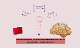 Is there tension in the relationship between the Natural Sciences and Human Sciences?