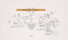 Copy of Teoría  de la Geografía