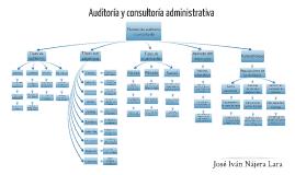 Proceso de auditoría y cosultoría