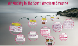 Air Quality In the South American Savanna