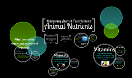 Copy of Meeting Nutritional Needs of Animals