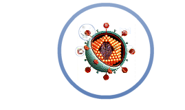 Copy of Evasion de los mecanismos de repuesta inmune por los virus