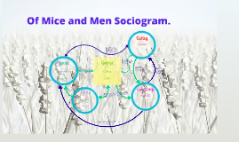 OMAM Sociogram