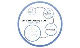 Copy of Unit 1: The Chemistry of Life