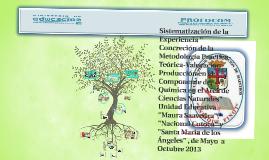 """Copy of Sistematización de la Experiencia """" Concreción de la Metodol"""