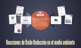 TAQAN U2 A2 Reacciones de Óxido Reducción en el medio ambiente