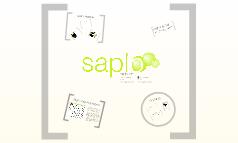 Saplo@Cision