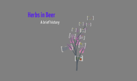 Herbs in beer