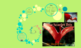 Copy of The Scarlet Ibis