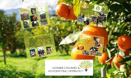 Summer Culinary & Agricultural Internship