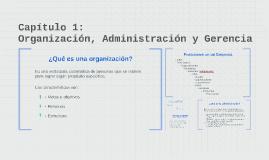 Capítulo 1: Administración y Gerencia
