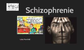 Beau Shizophrenie By Vinzent Keilholz On Prezi