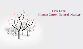 Love Canal-Human Caused   Natural Disaster