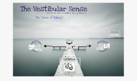 The Vestibular Sense