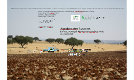 Agroforestry Systems, Europe, Portugal, Montado (cork), modelling, assessemnt