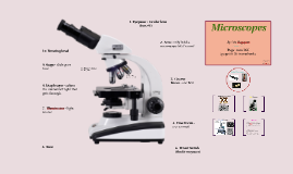 Microscopes - 7th Grade