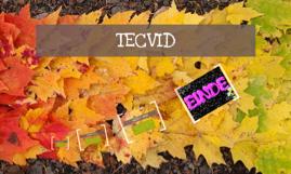 Copy of TECVID