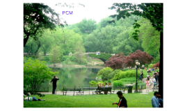 PCM blok 1.1