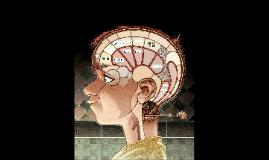 Formation de souvenirs sensoriels en MVLT :