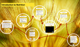 Introduction to Nutrients