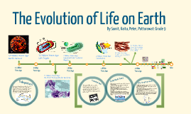 Timeline: The Evolution of Life on Earth