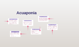 Copy of Acuaponia