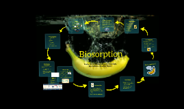 Copy of BIOSORPTION