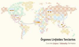 Órganos Linfoides Terciarios
