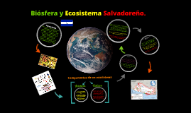 Copy of Biosfera y Ecosistema Salvadoreños