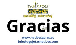 Copy of Presentación Nativos en Grupo tesoro BNI
