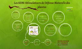 Copy of Copy of Les SDN: Stimulateurs de Défense Naturelle