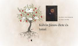 Kálvin János élete és tanai