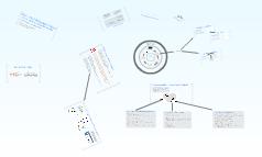 ERP - Einführungsprojekte