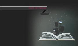 RUTA DE MEJORA